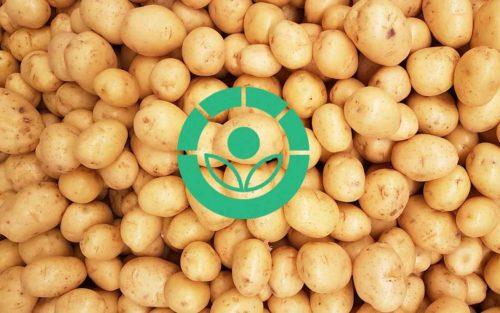 ¿Son saludables los alimentos irradiados?