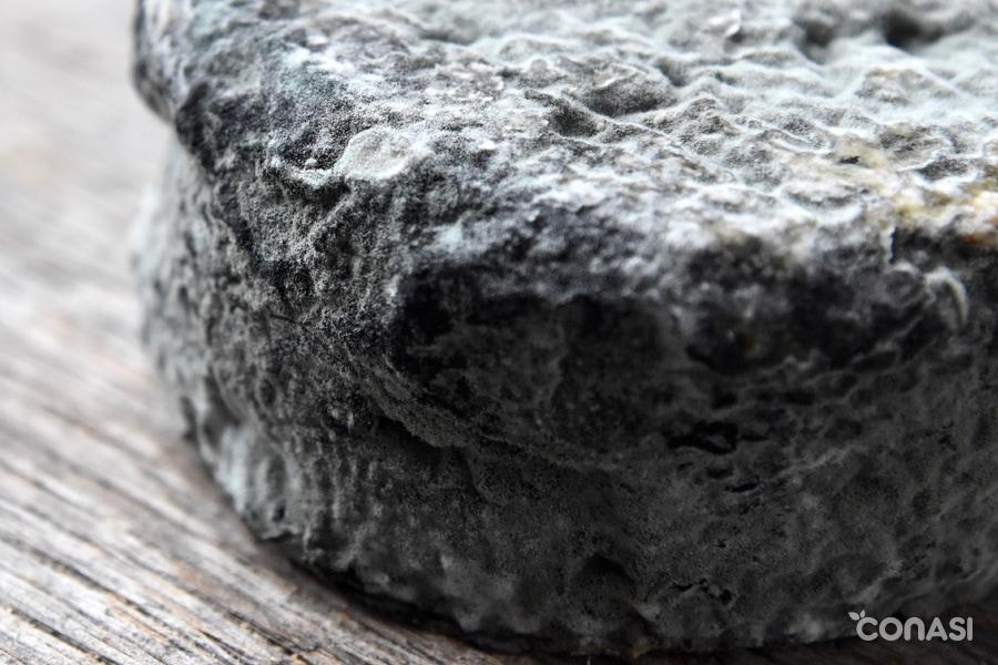 Corteza de un quesoo fermentado