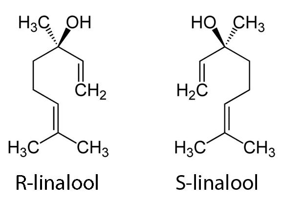 Estructura del S-linalool y del R-linalool
